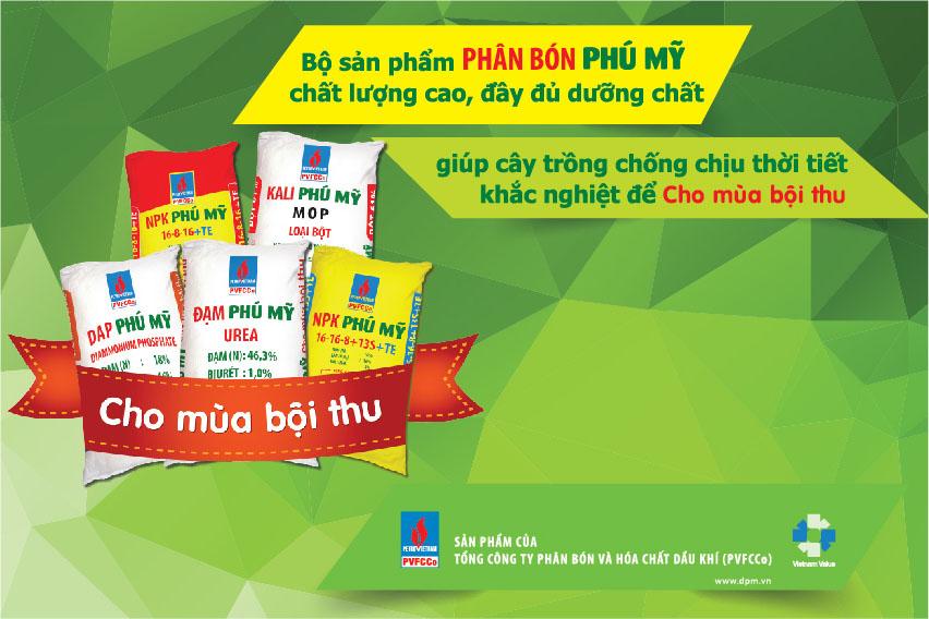 dam-phu-my-chuoi-5-tdam