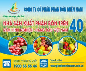 cong-ty-cp-phan-bon-mien-nam-toa-dam