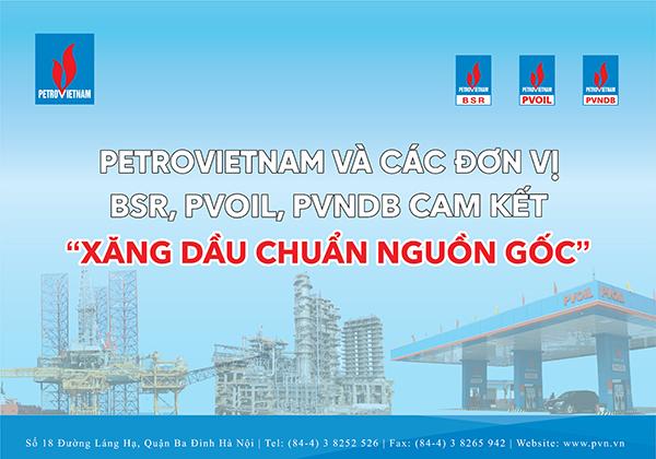 pvn-hang-viet-2020
