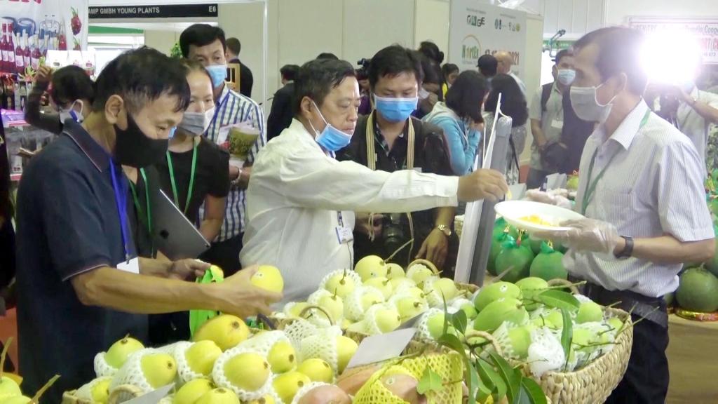 Nỗ lực mở rộng thị trường tiêu thụ nông sản