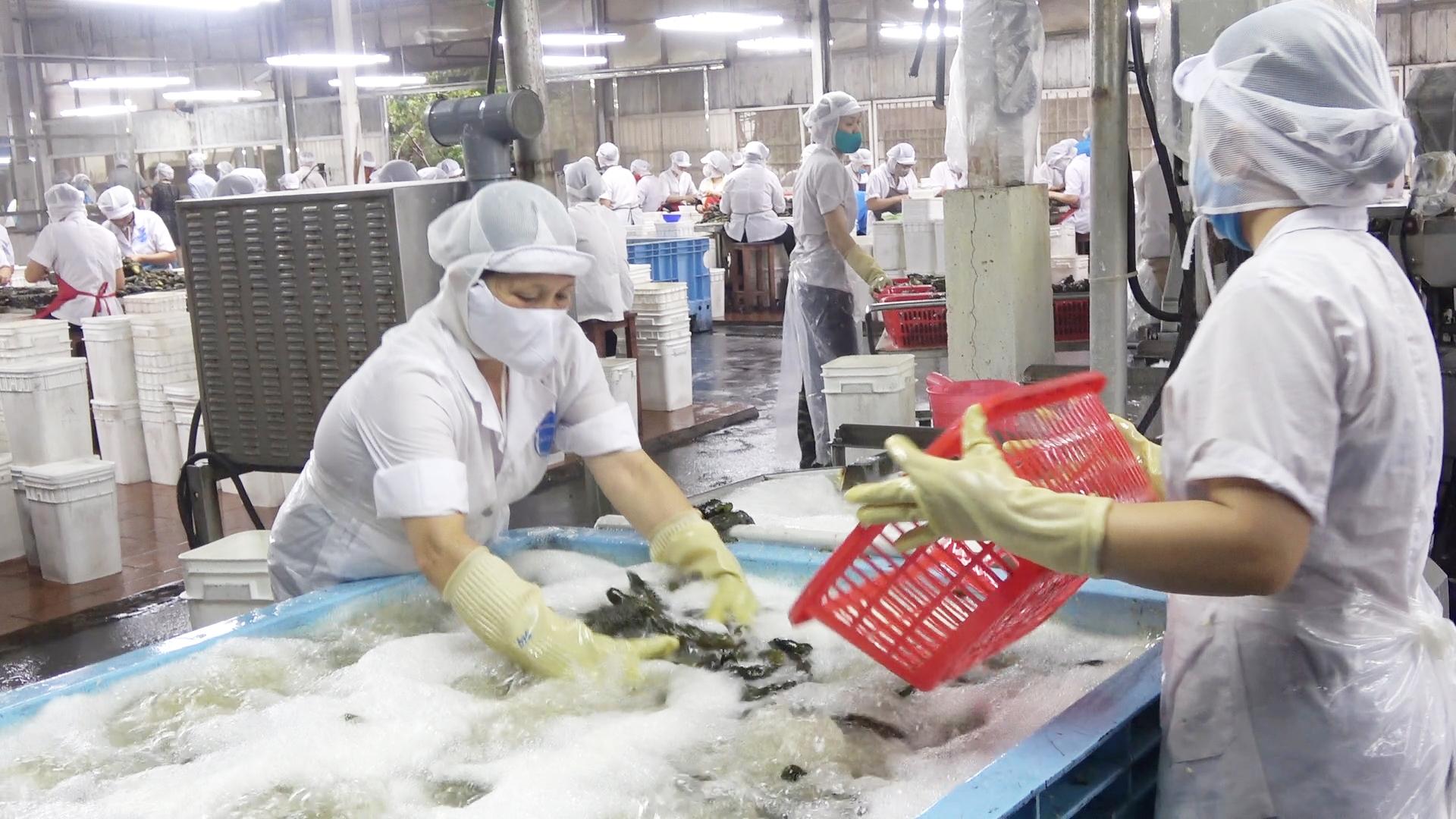 Bảo đảm an toàn thực phẩm: Điều kiện tiên quyết thúc đẩy tiêu thụ sản phẩm