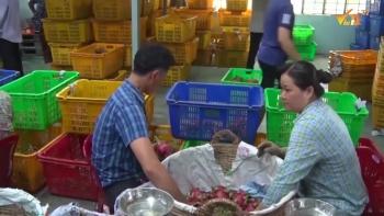 Truy xuất nguồn gốc đối với xuất khẩu hàng hóa sang Trung Quốc